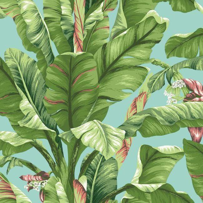York AT7070 Tropics Banana Leaf Wallpaper Botanical