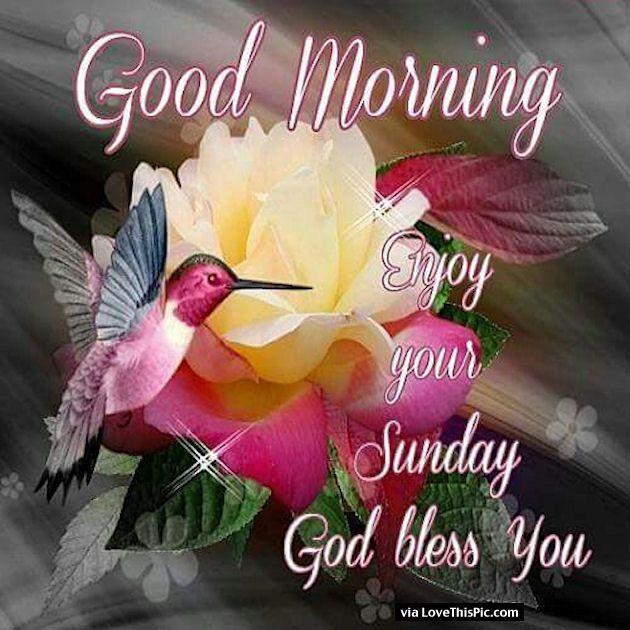 Good Morning Enjoy Your Sunday God Bless Happy Valentines Day