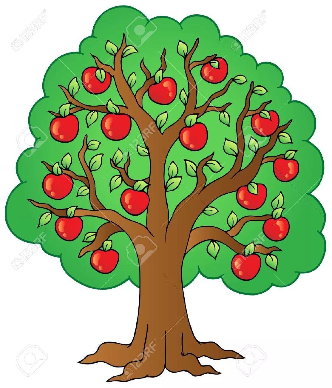 яблоня с яблоками картинки для детей: 12 тыс изображений ...