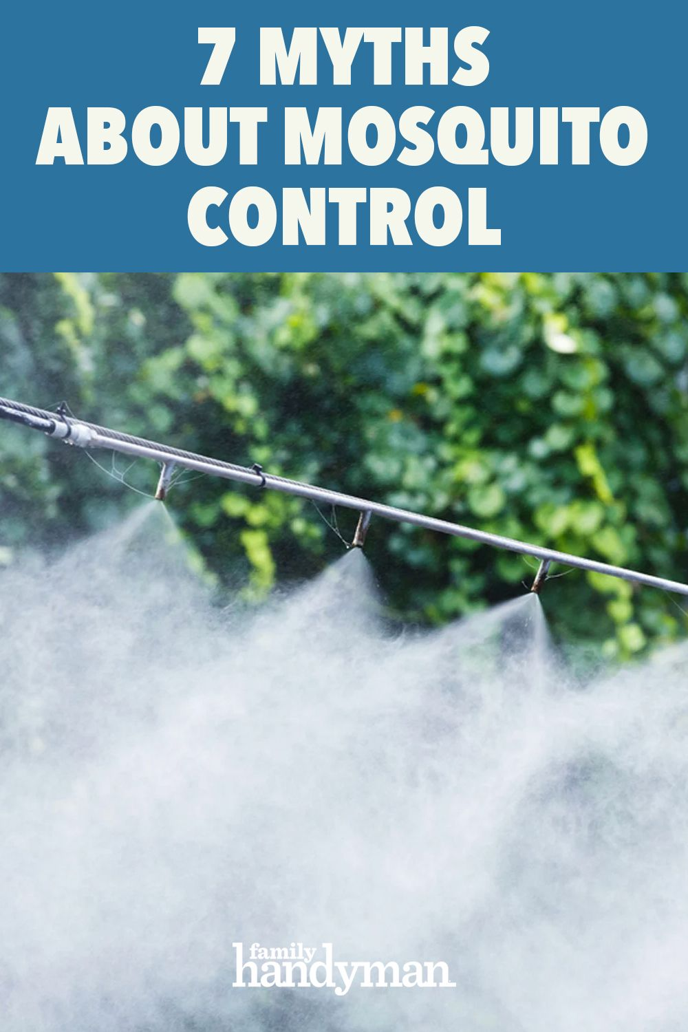 7 Myths About Mosquito Control You Need to Stop Believing