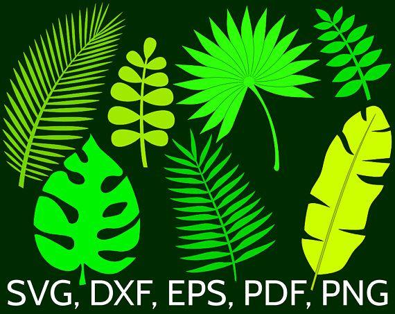7 Jungle Tropical Leaves Svg Cut Files For Cricut