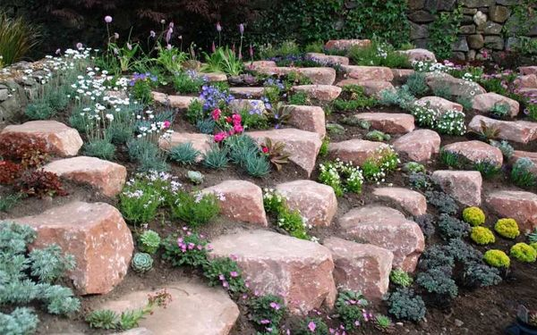 How To Build And Plant An Alpine Rock Garden David Domoney Rock Garden Landscaping Rock Garden Landscaping With Rocks