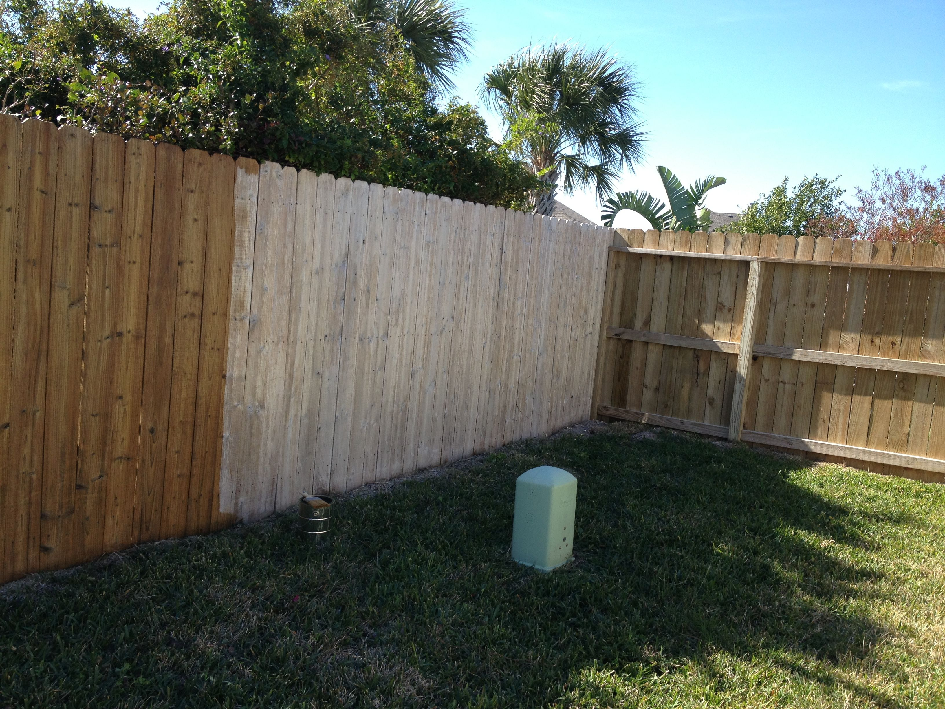 Easy to redo your wood fence 1 spray fence with bleach