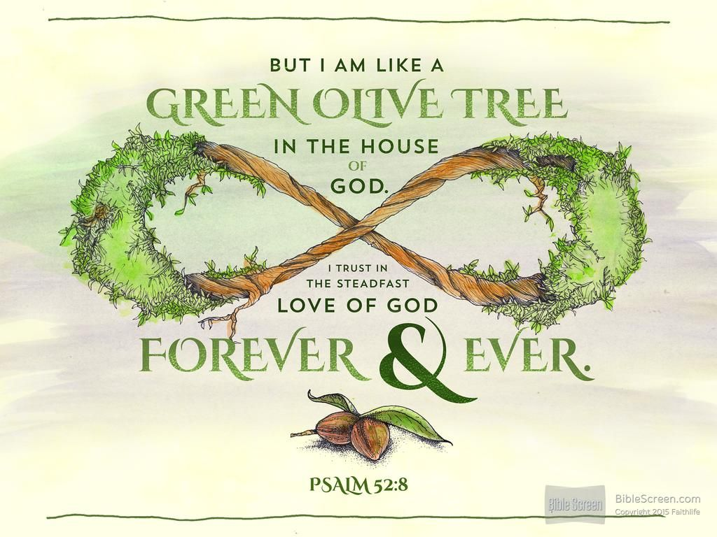 Olive Tree Biblical Inspiration POSTER PSALM 52:8 Trust and Faith in God
