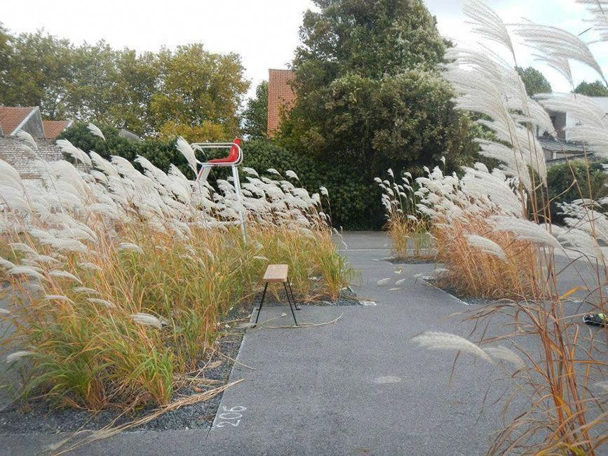 Landscape Gardening Course Liverpool Landscape And Gardening Design Business Landscape Plans Landscape Design Urban Landscape Design