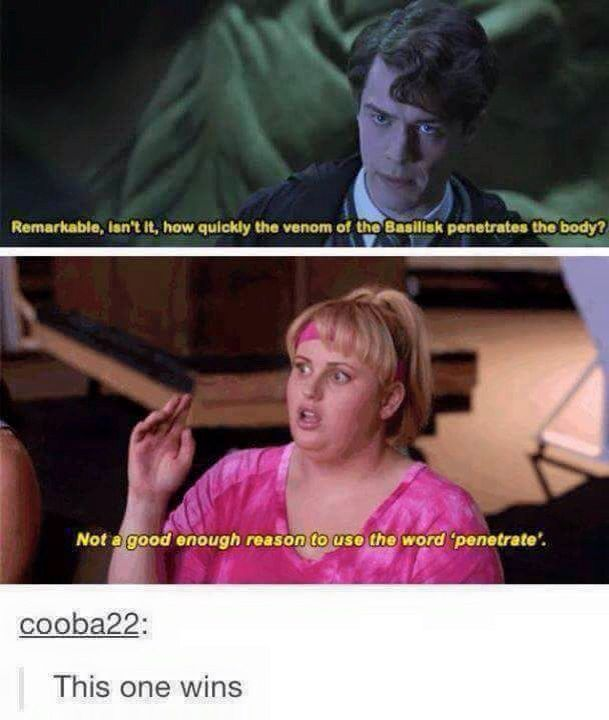 Not A Good Enough Reason To Use The Word Penetrate Harry Potter Tumblr Harry Potter Funny Harry Potter Fan