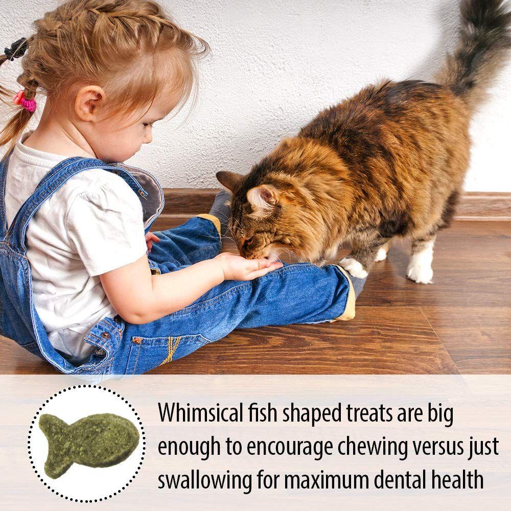 Emerald Pet Feline Dental Treat Salmon For Cats Ad Feline Spon Pet Emerald Dental Cat Snacks Feline Health Cat Treats