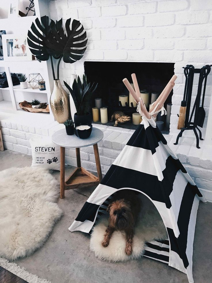 Awesome Teepee Dog Bed  Ideas