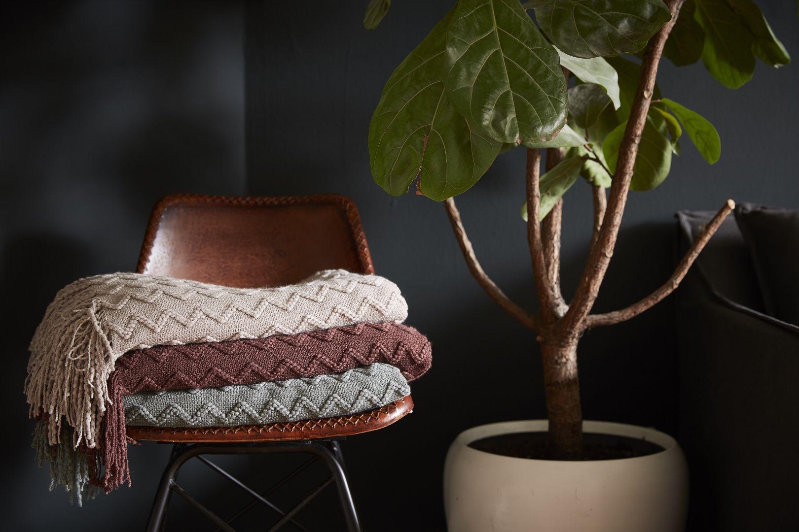 Woontrends winter trends showroom and interiors
