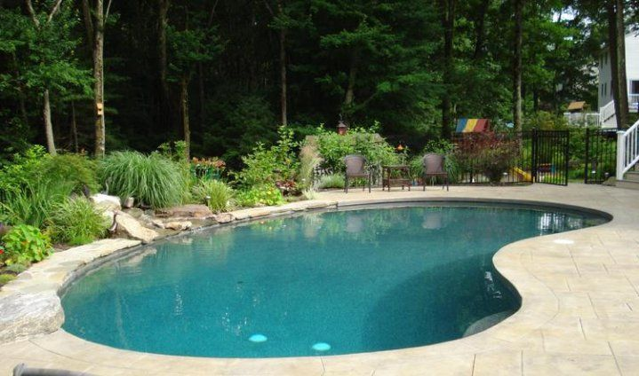 Kidney Shape Pool Kidney Shaped Pool Pool Landscaping Backyard