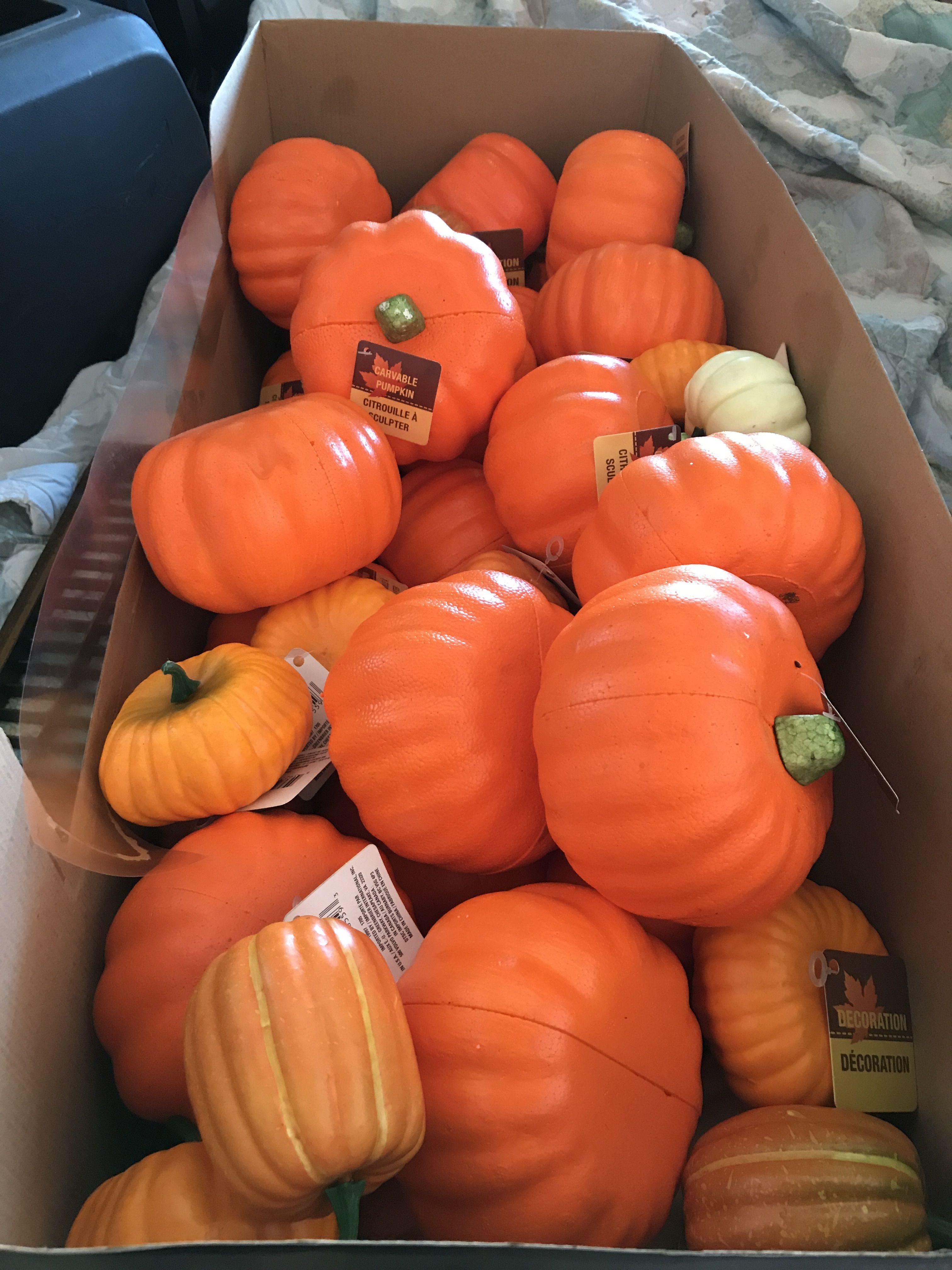 All Kinds Of Styrofoam Pumpkins I See All Kinds Of