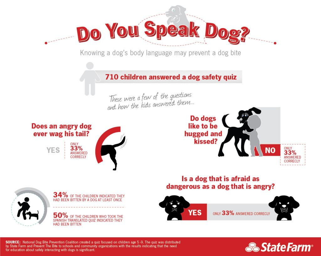 Knowing a dog\'s body language may prevent a dog bite | Dog-Lover ...
