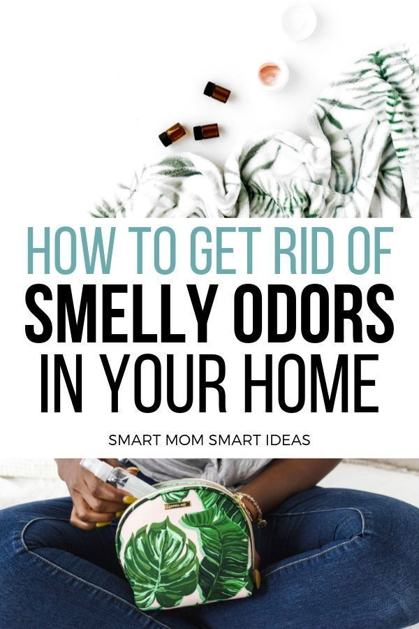 how to get rid of stinky house odors