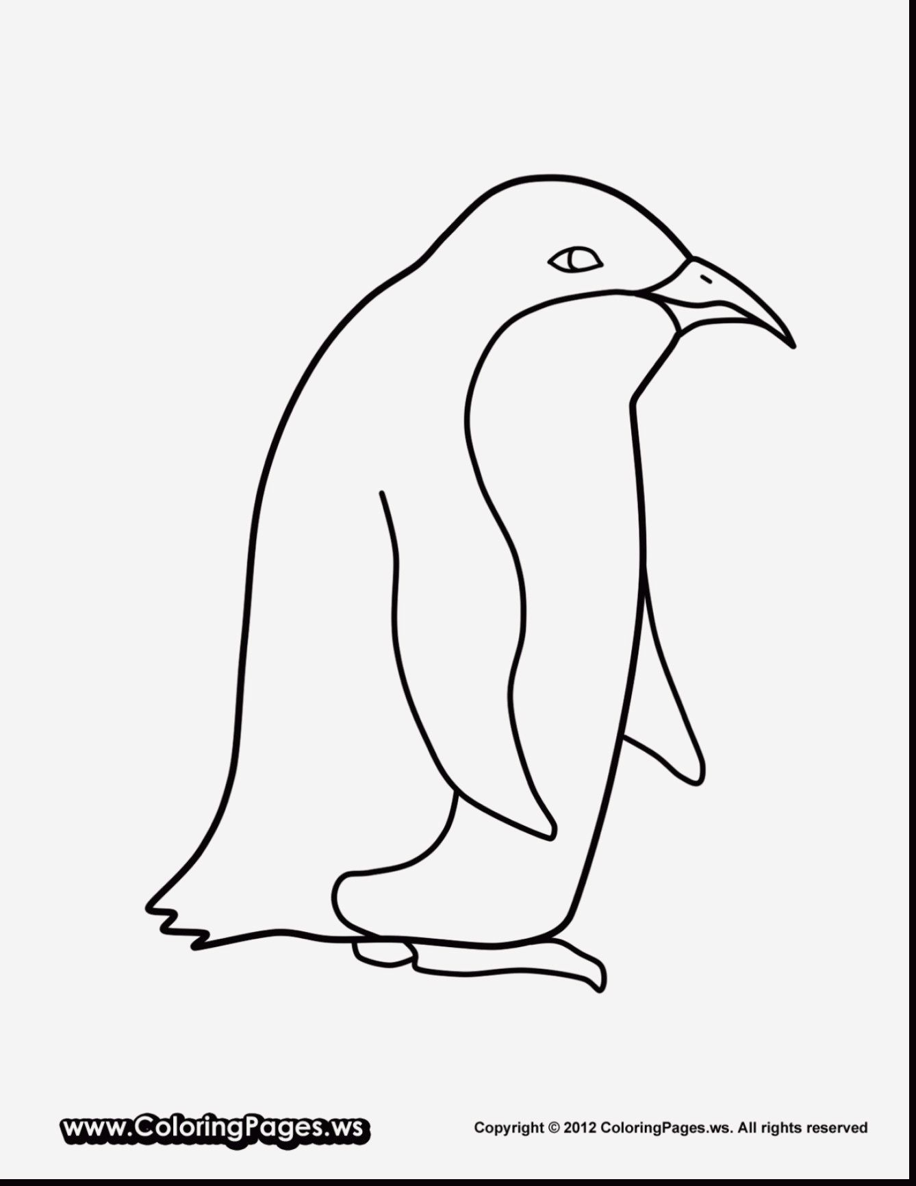 18 Dltk Alphabet Coloring Pages Penguin Coloring Pages Coloring Pages Animal Templates