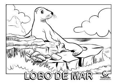 Dibujos Para Colorear Coloring Pages Lobo De Mar Humanoid Sketch Art Fictional Characters
