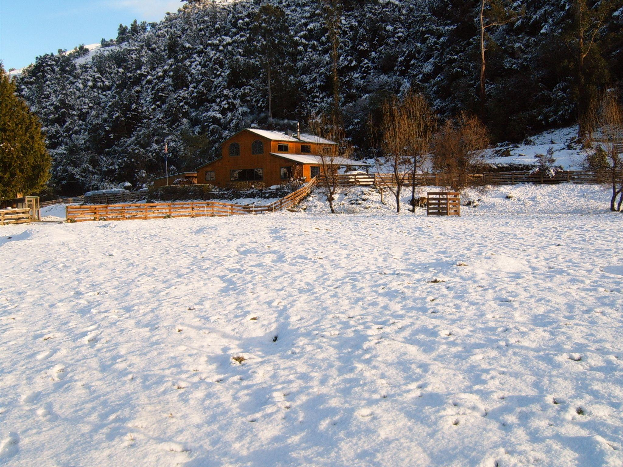 Customkit in the Snow