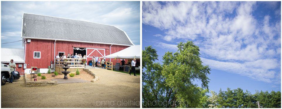 Mr. & Mrs. Orchard | Barn at Windy Pines | Madison WI ...