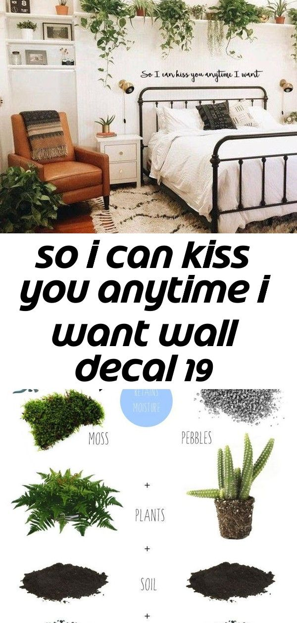 So i can kiss you anytime i want wall decal 19 So I can kiss you anytime I want Wall Decal How to make a Terrarium in 4 steps  Pin now and read later Repinned by eJoy 20X...