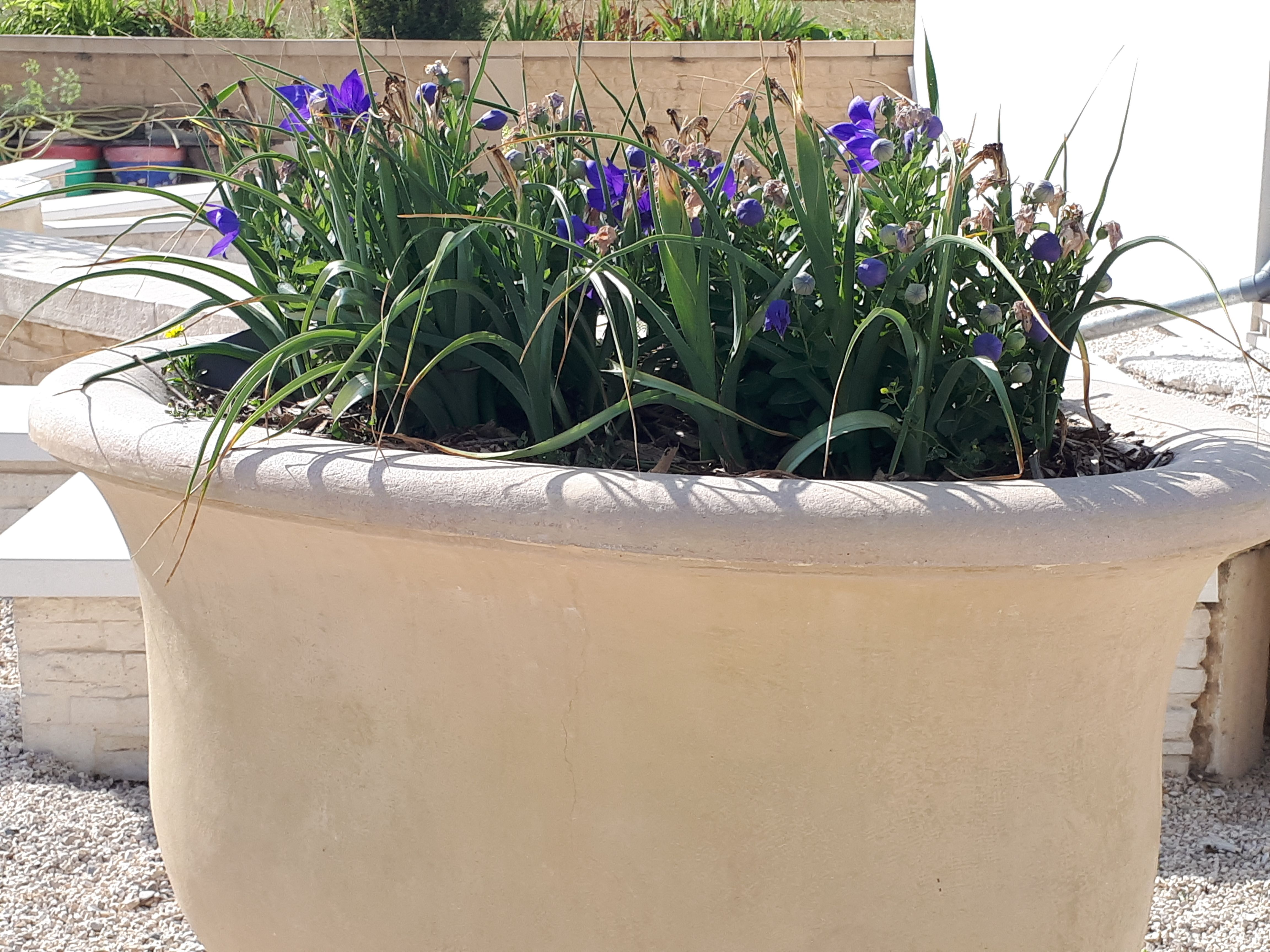 Aménagement et décoration extérieur; jardin, terrasse et allées ...