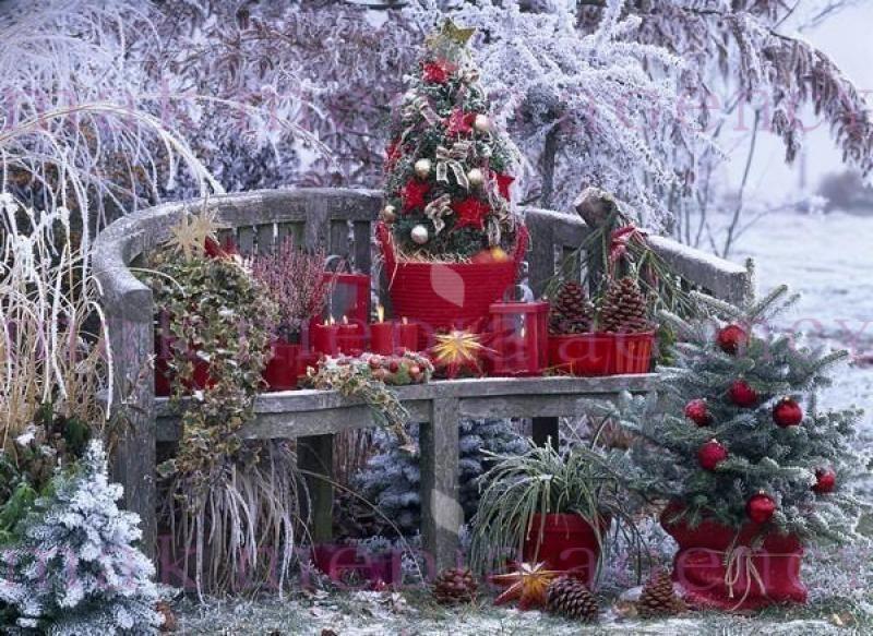 Pin by barbara mckoy on balkon und hauseingang ideen pinterest weihnachten deko and basteln - Balkon deko weihnachten ...