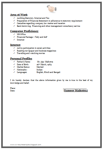 Professional Chartered Accountant Resume Sample Doc 2