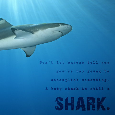Inspirational Quote Don T Let Anyone Tell You You Re Too Young To Accomplish Something A Baby Shark Is Still A Shark Shark Baby Shark Told You So
