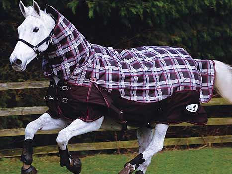 17 Best Images About Cool Horse Stuff On Pinterest Heavy Weights Les And