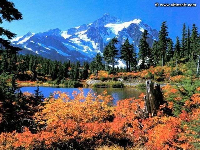 Nature Screensavers Nature Screensavers Nature Beautiful Places