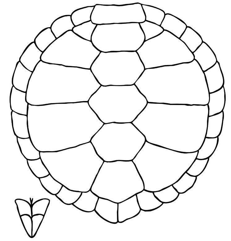 Turtle Shell Pattern Coloring Page Pattern Coloring Pages Shell