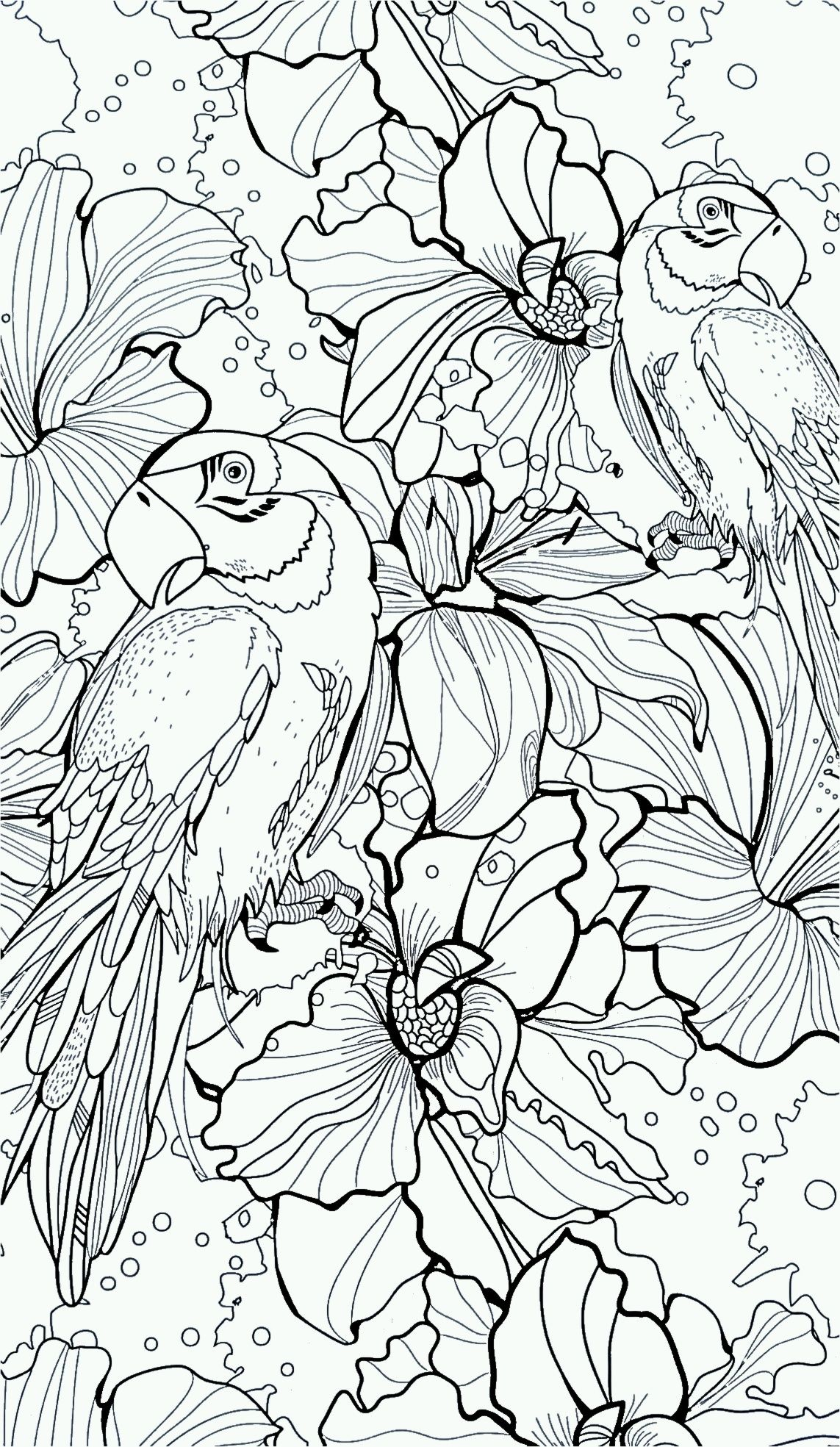 parrot flower wings coloring pages colouring detailed