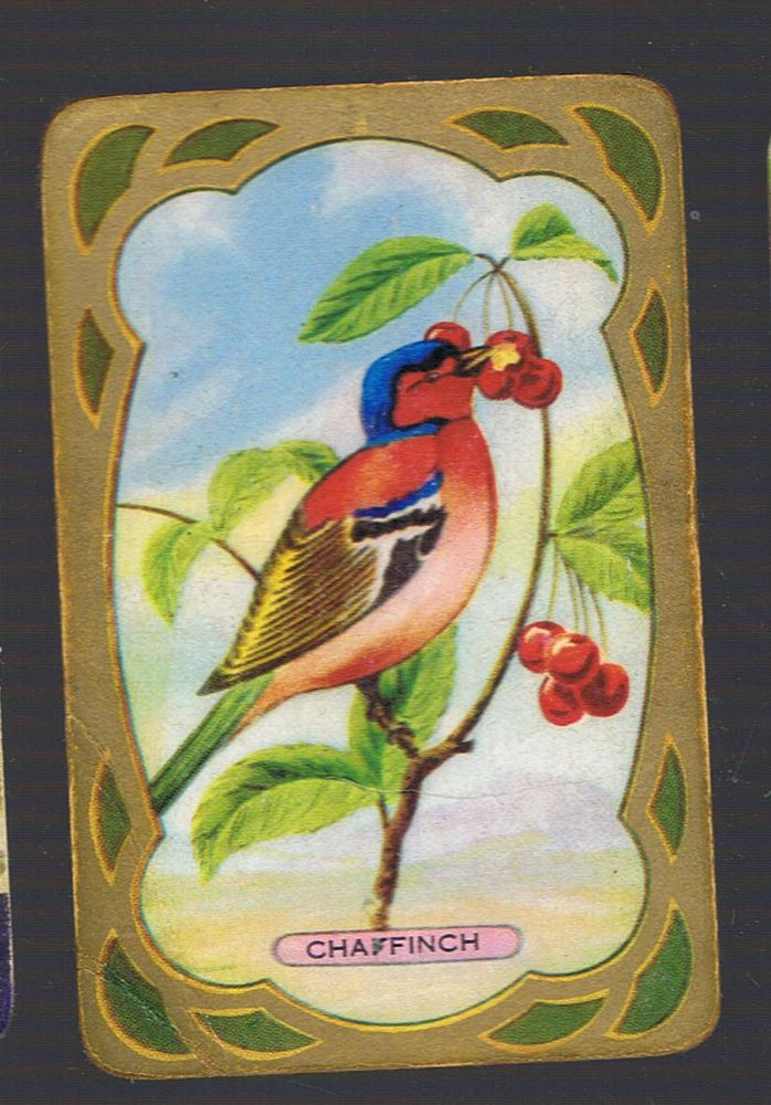 Playing Swap Cards 1 Single  1950 s   COLES   BIRD   NAMED