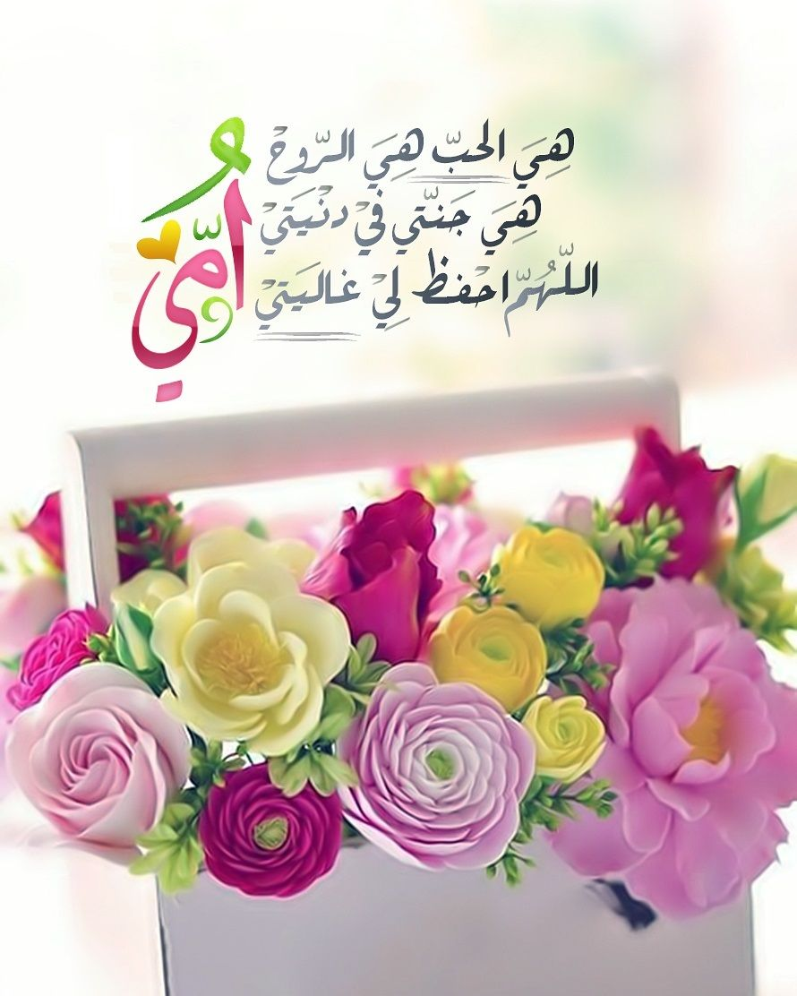 Desertrose أمي الحبيبة Mom Birthday Quotes Arabic Quotes Good Night Messages