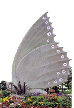 102e5f3a2458e781a0e4c2f1e35987a3 - St Louis Botanical Gardens Butterfly House