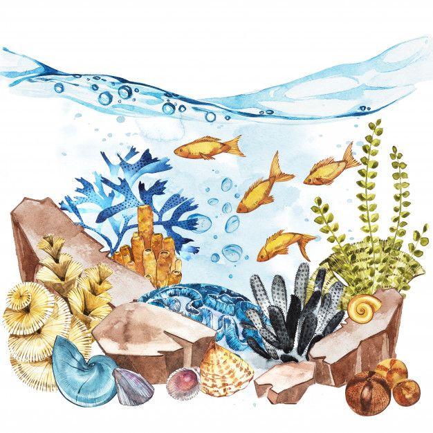 48++ Underwater landscape ideas