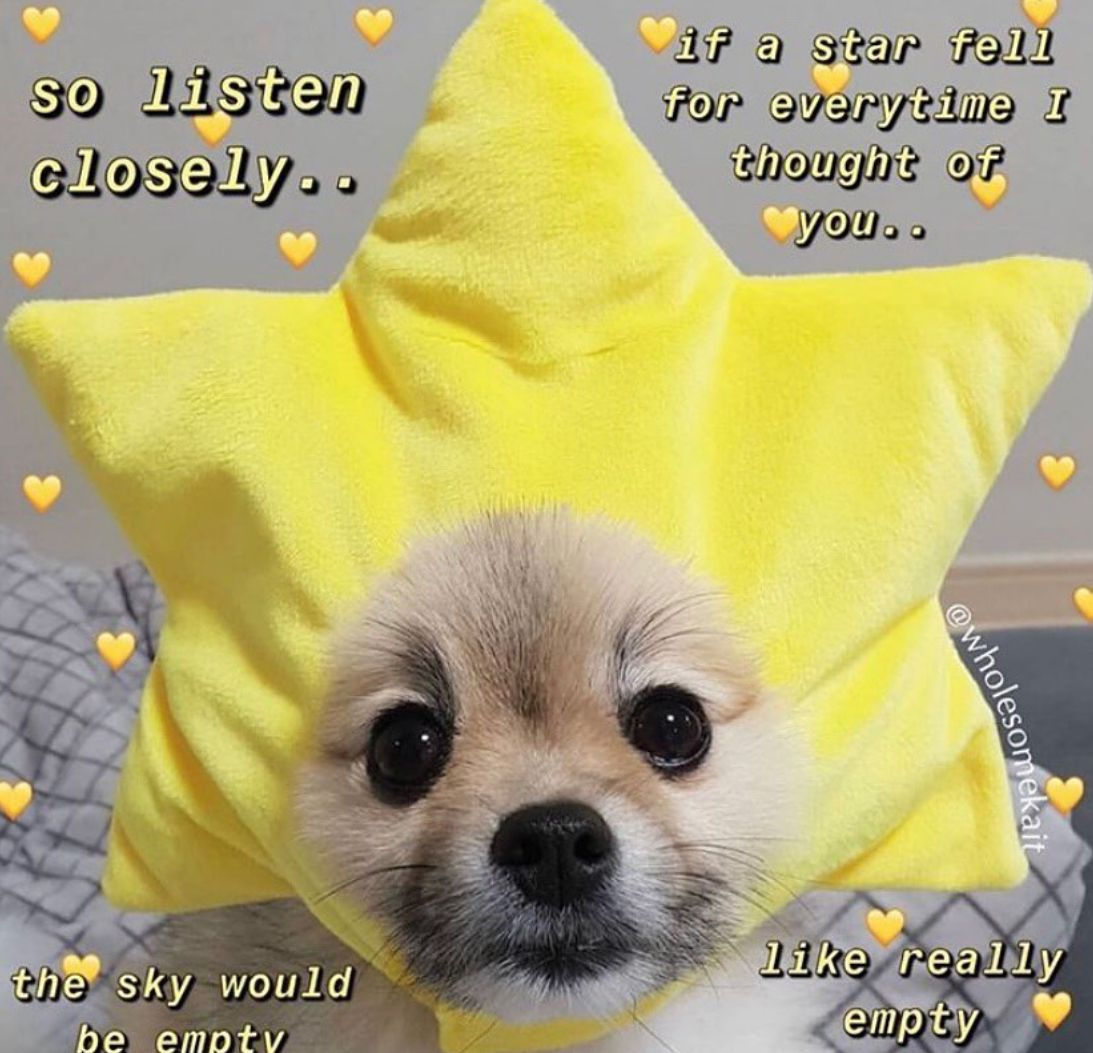 Pin by ⋆ 𝒢 𝒢 ⋆ (っ )っ ♥ G G ♥ on Wholesome in 2020 Cute
