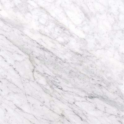 Msi Carrara White 12 In X 12 In Polished Marble Floor And Wall Tile 10 Sq Ft Case Tcarrwht1212 The Home Depot In 2020 Honed Marble Floor Marble Floor Honed Marble