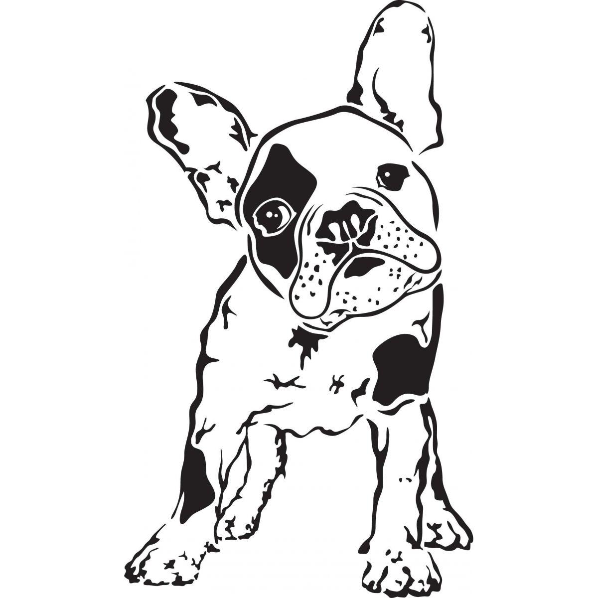 French Bulldog 1200x1200