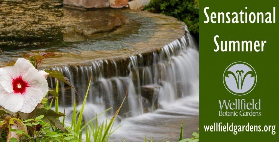 102f9e11edff36cdba36d1bac0dfd48d - Wellfield Botanic Gardens In Elkhart Indiana