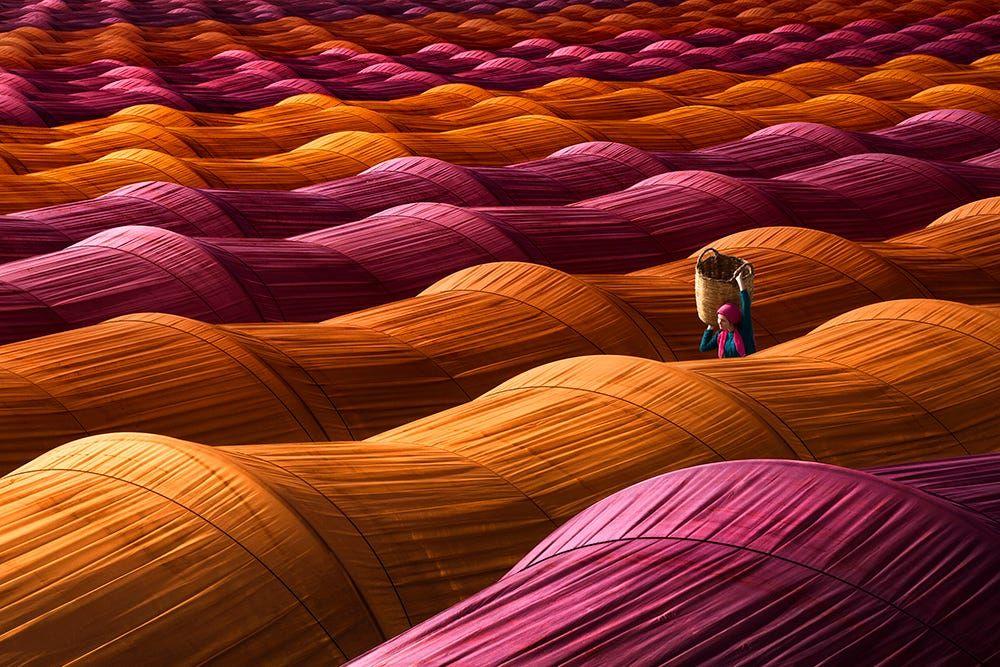 Strawberry greenhouses by Leyla Emektar