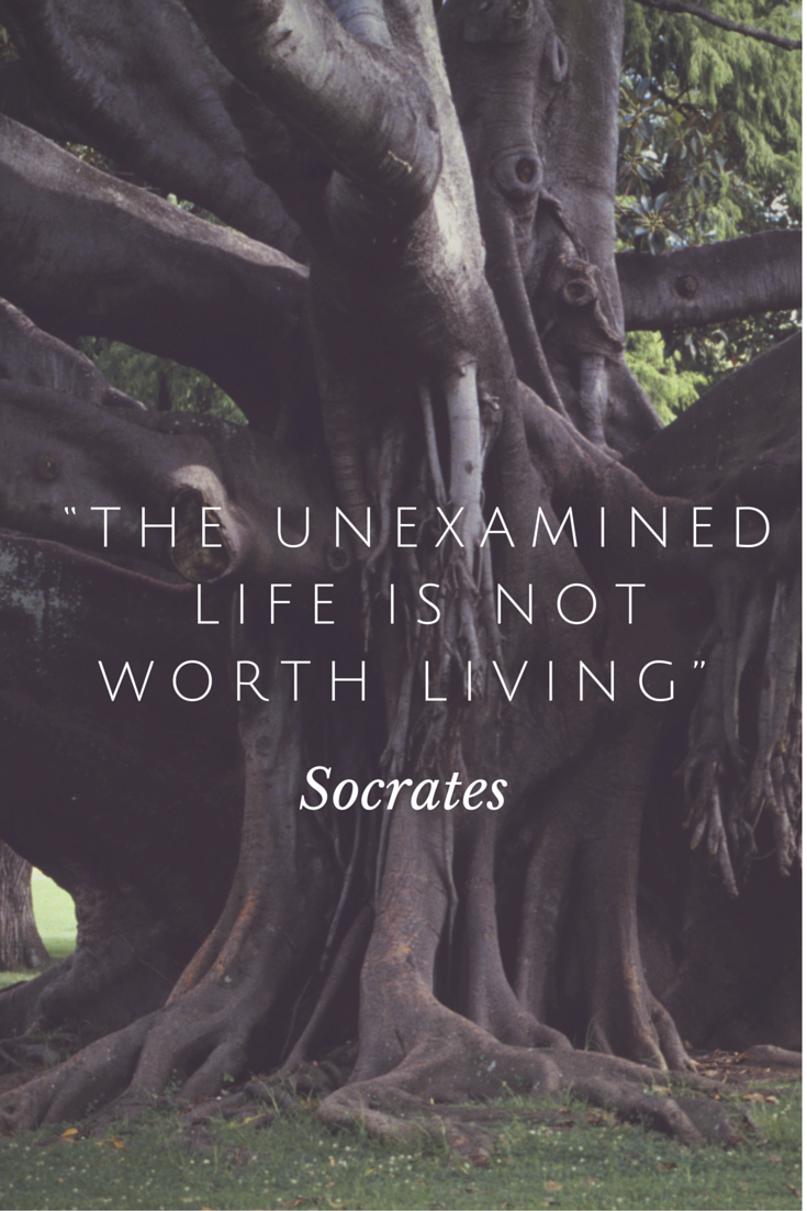 The Examined Life >> The Examined Life Is Not Worth Living Philosophy Quotes Socrates