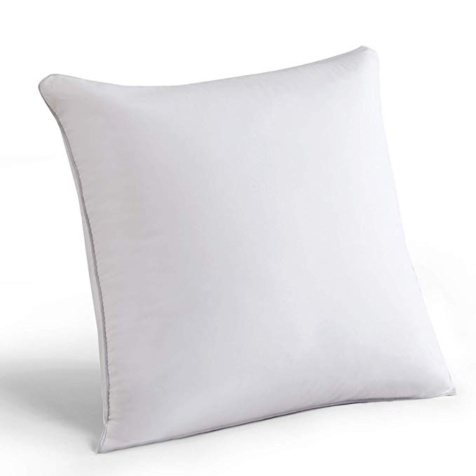 MoMA 16 x 16 Pillow Inserts (Set of 2