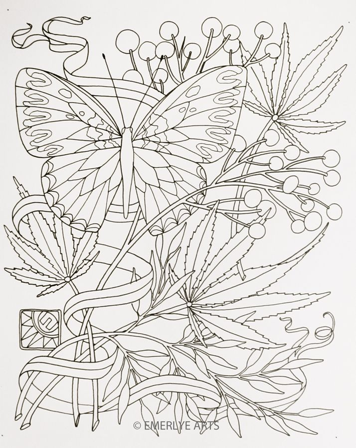 Butterfly Three Herbs Adult Coloring Pages Leaf Coloring Page Coloring Pages