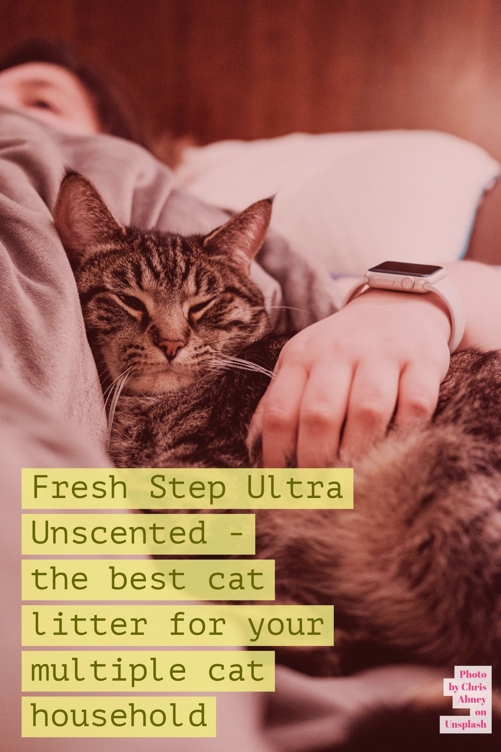 Best Cat Litter for Multiple Cats Fresh Step Unscented