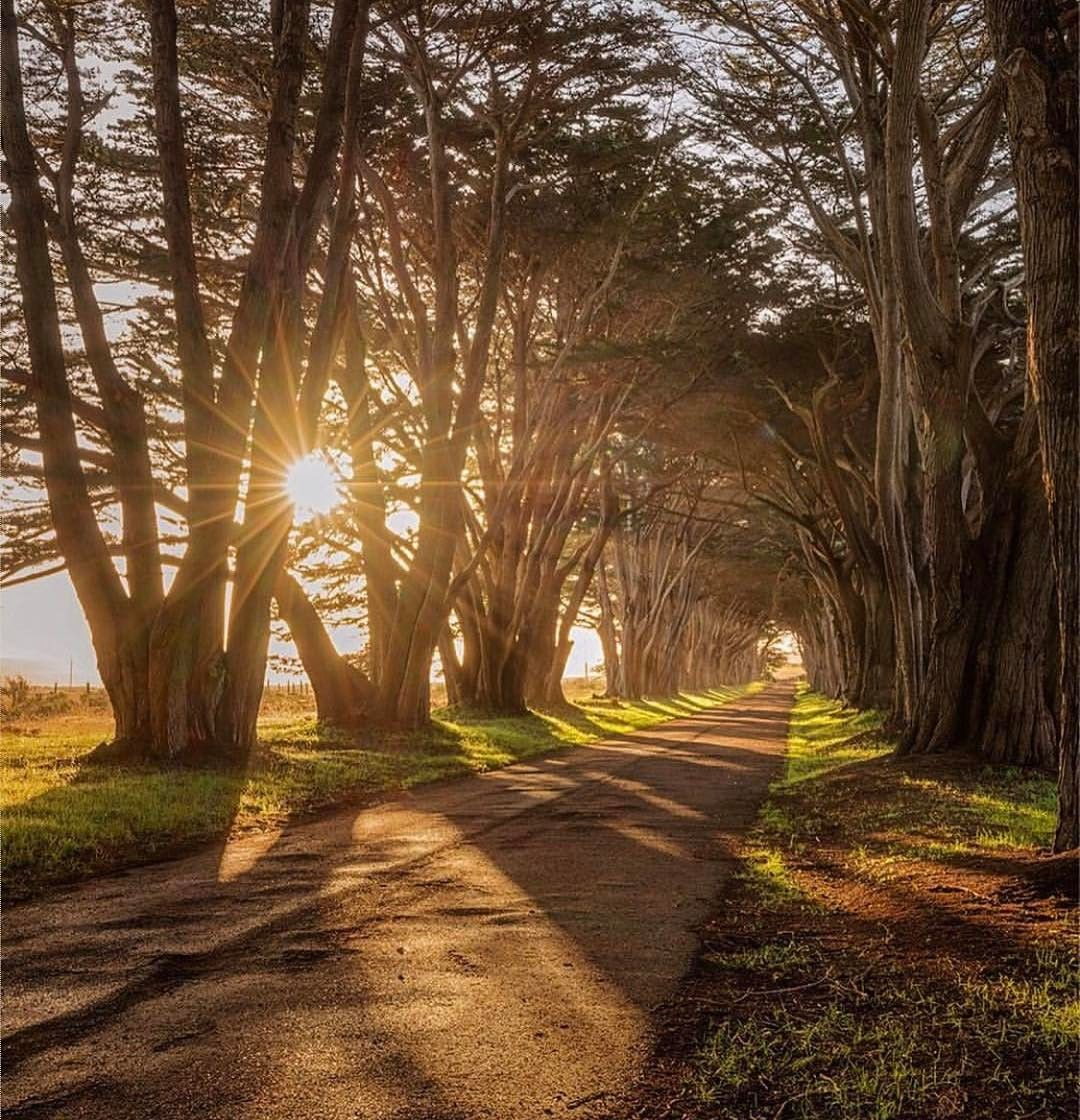 11 San Francisco Bay Area hikes with scenic endings | Let\'s see the ...