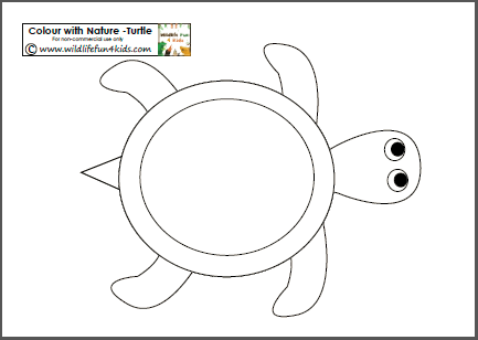colour with nature free turtle template printable plus other