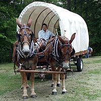 Covered Wagon Rides at Explore Park