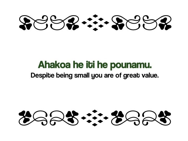 Image result for maori proverb on constant practice