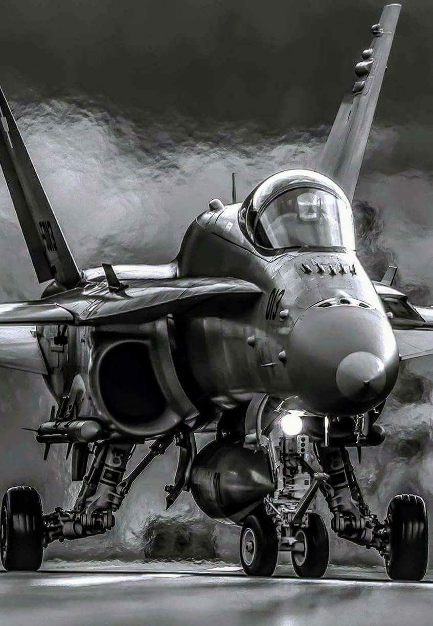 The McDonnell Douglas F/A-18 Hornet is a twin-engine, supersonic
