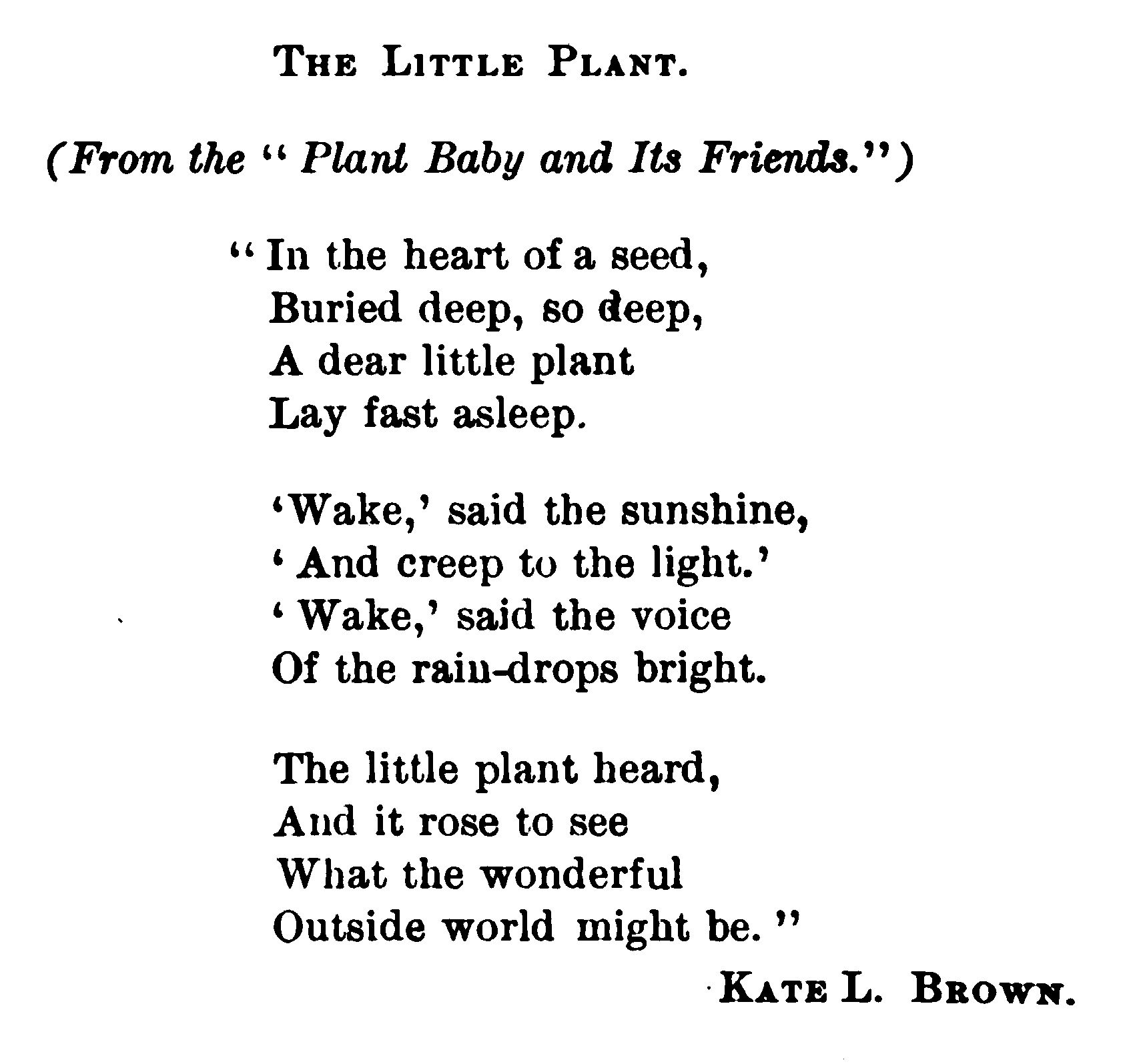 A Little Poem On How Plants Grow From Seeds