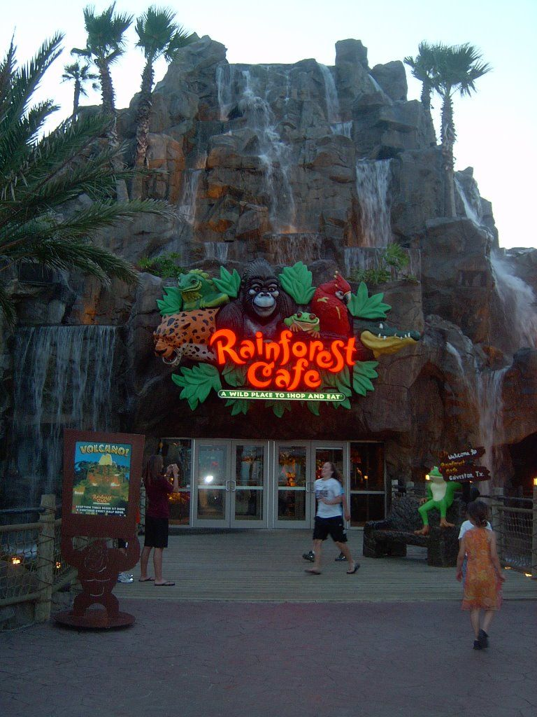 Rainforest Cafe in Galveston, Texas | Vacation in 2019